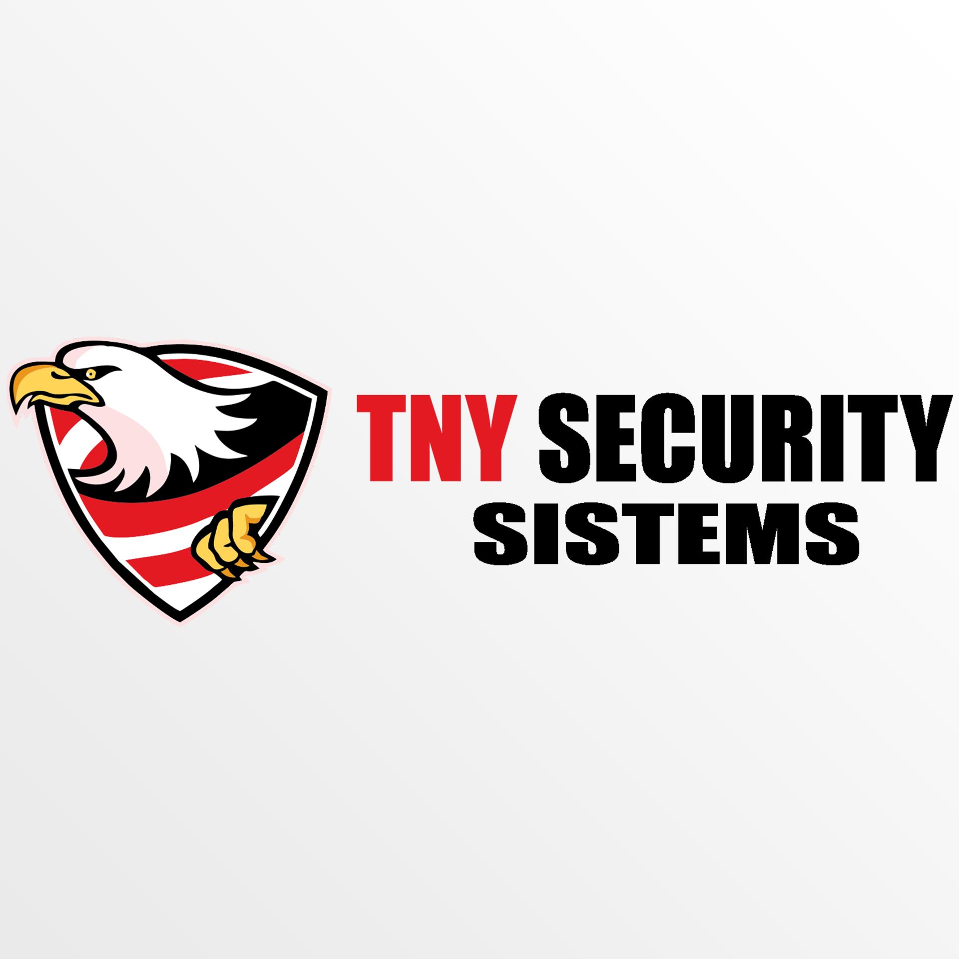 logo - TNY security 5